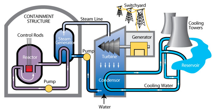 an overview of the two types of nuclear plant generators